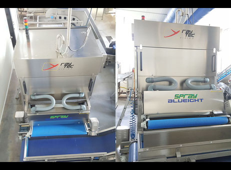 Used Raytec Vision S.P.A. Spray S-250-K-B Vegetable and fruit cutting, washing and blanching machine